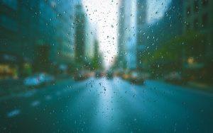 梅雨 引きこもる